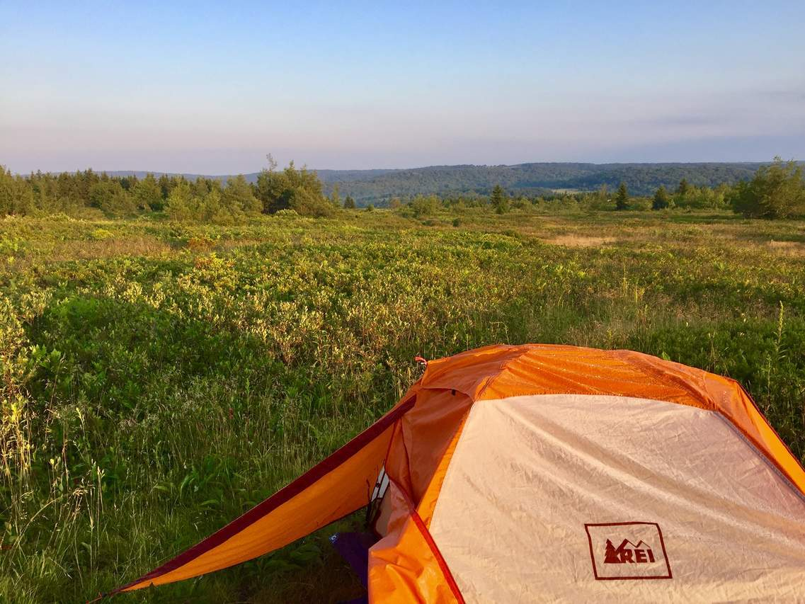 Picture 2 of Dolly Sods Solo Camping July 2018