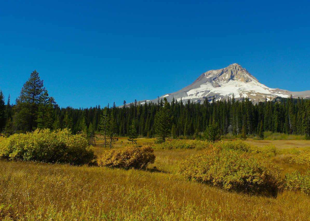 Picture 5 of Elk Meadow