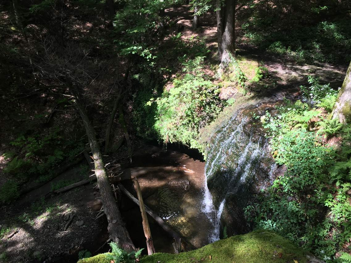 Picture 3 of Gunn Brook Falls August 2019