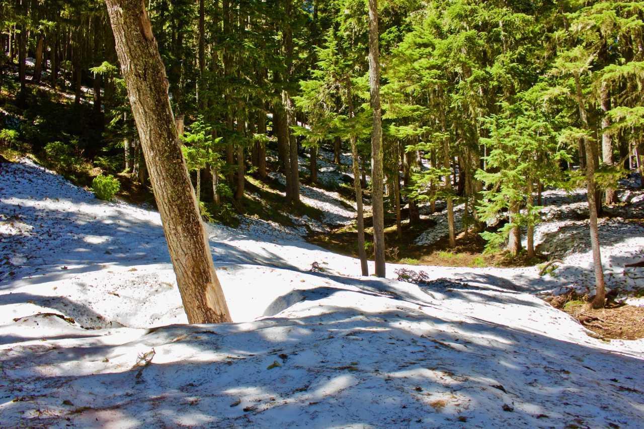 Picture 16 of Shellrock Lake-Frazier Turnaround